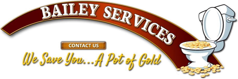 Bailey Services